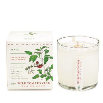 Ароматическая свеча Wild Tomato Vine от KOBO Candles в интернет-магазине Candlesbox